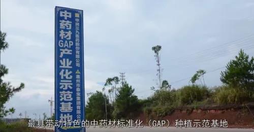 泰宝中医药健康养生产业园